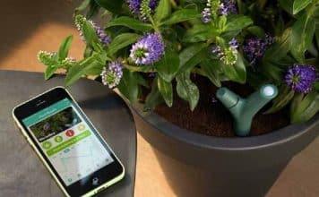 Le top des objets high-tech pour le jardin