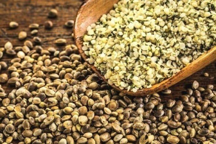 Quelles sont les vertus des graines de cannabis