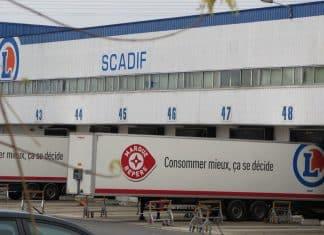 Scadif, le spécialiste de la grande distribution