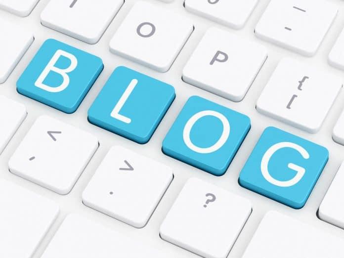 Découvrir le blog WildExpérience
