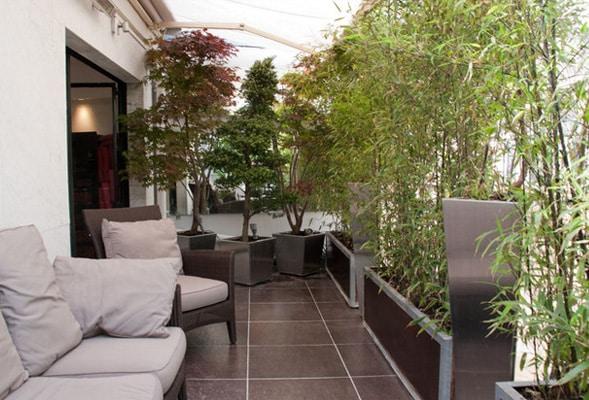 Comment prot ger son balcon du vis vis - Isoler son jardin des regards ...