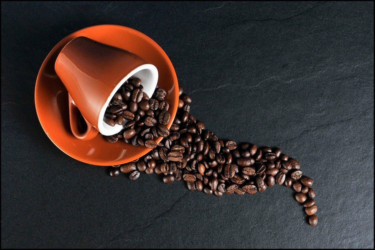 Café en grain dans une tasse