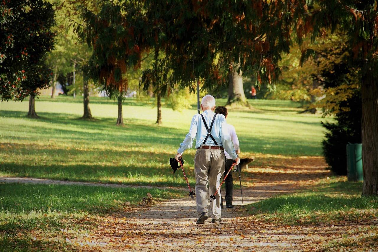 Quelles sont les prestations proposées par un jardinier paysagiste ?